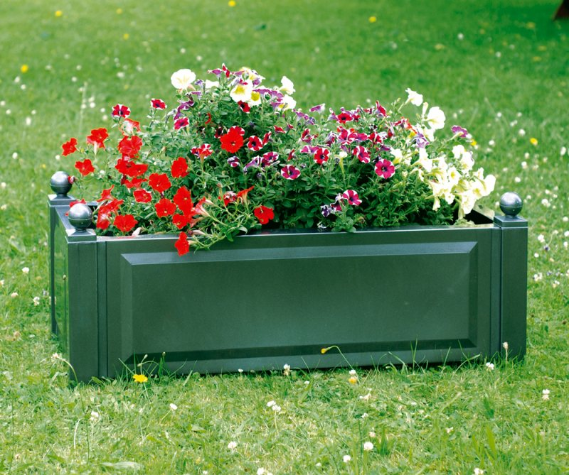 вас Господь цветы для уличных вазонов знали том, что