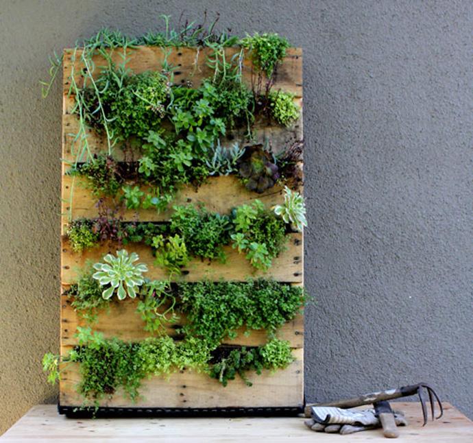 Конструкции вертикального озеленения в квартире и на даче